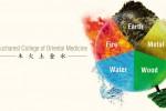 Vedeti detalii pentru Acupunctura si Feng-Shui