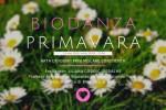 Vedeti detalii pentru Biodanza - Primavara