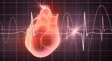 Bucuresti - Curs HeartMath - Coerenta Inimii si Anduranta