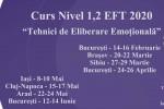 """Vedeti detalii pentru Bucuresti.curs nivel 1,2 """"tehnici de eliberare emotionala"""" (eft)"""