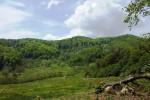 See Calatorie Initiatica In Tara Luanei( Muntii Buzaului) details