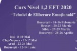 "See Cluj. Curs Nivel 1,2 ""Tehnici de Eliberare Emotionala"" (EFT) details"