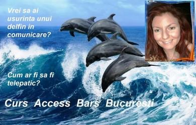 Curs Access Bars Bucuresti