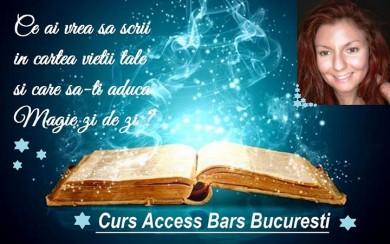Curs Access Bars in Bucuresti