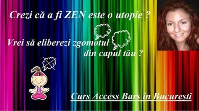Curs Access Bars in Bucuresti, cu Diana