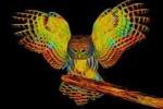 See Curs bacau avansat theta healing details