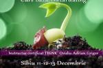 Vedeti detalii pentru Curs Baza ThetaHealing Sibiu