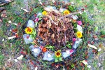 See Curs de tehnici shamanice, drumetii interioare si alchimie details