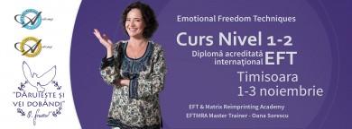 Curs EFT Nivel 1 si 2 cu Oana Sorescu la Timisoara