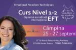 """Vedeti detalii pentru Curs Nivel 1,2  """"Tehnici de Eliberare Emotionala"""" (EFT)"""