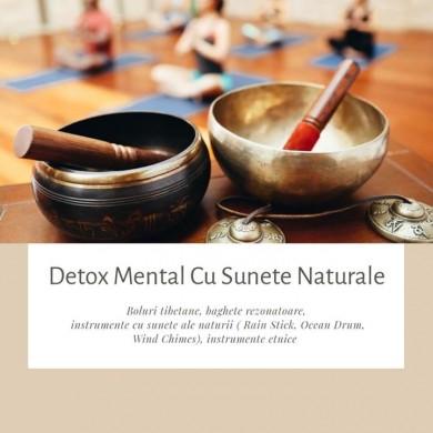 Detox Mental Cu Sunete Naturale