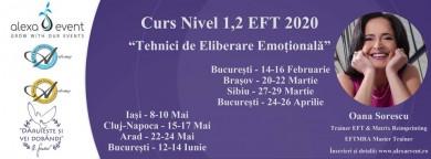 """Iasi. Curs Nivel 1,2 """"Tehnici de Eliberare Emotionala"""" (EFT)"""