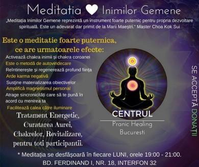 Meditatia Inimilor Gemene