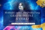 Vedeti detalii pentru Meditatii Online cu Ovidiu Yang