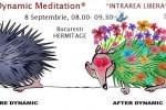 Vedeti detalii pentru Osho® dynamic meditation - open doors event