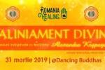 See Prezentare si Sesiuni individuale Aliniament Divin ~ Brasov details