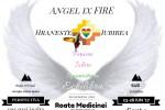 Vedeti detalii pentru Roata Medicinei AngelixFIRE 5 zile intensiv: 23-28 Iunie 2017 #1/4: SUD Sarpe