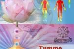 Vedeti detalii pentru Seminar de initiere Tehnica de Tummo