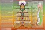 Vedeti detalii pentru Seminar intensiv de ayurveda si autocunoasterea fiintei umane