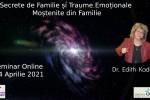 See Seminar online. secrete de familie si traume emotionale mostenite din familie details