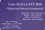 """Vedeti detalii pentru Sibiu. Curs Nivel 1,2 """"Tehnici de Eliberare Emotionala"""" (EFT)"""