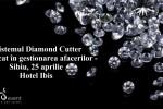 Vedeti detalii pentru Sibiu.Sistemul Diamond Cutter aplicat in gestionarea afacerilor