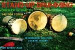 Vedeti detalii pentru Stand-up Drumming