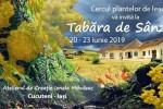 Vedeti detalii pentru Tabara de plante de la Cucuteni