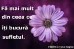 See Tabara spirituala la munte details