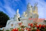 Vedeti detalii pentru Traditional Tantra Yoga Sadhana