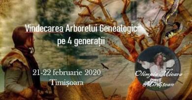 Vindecarea Arborelui Genealogic pe 4 generatii