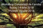 Vedeti detalii pentru Workshop Constelatii de Familie Ploiesti 15 Iulie 2018