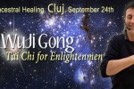 See WuJi Gong - Tai Chi for Enlightenment - Vindecarea ancestrala details